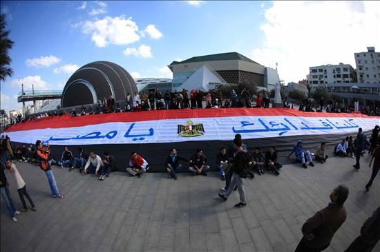 People protect Alexandria Library Feb2011_IMG1699