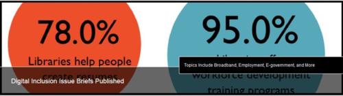 Digital Inclusion Survey screen shot