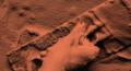 Martian trowel
